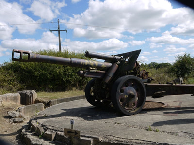Maisy battery gun